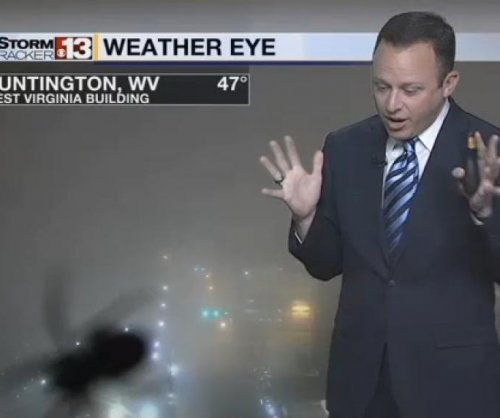 TV weatherman startled by giant spider image