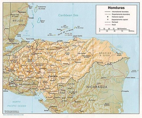 Defeated presidential contender challenges Honduran elections