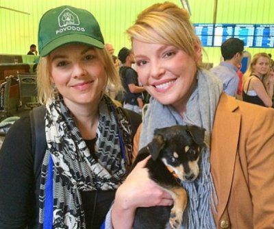 Ali Fedotowsky, Katherine Heigl rescue Sochi's strays