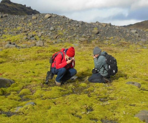 Land plants are older than scientists thought