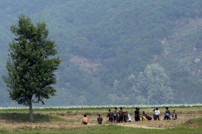 Study: Vaccination among North Korean defectors correlated to health awareness