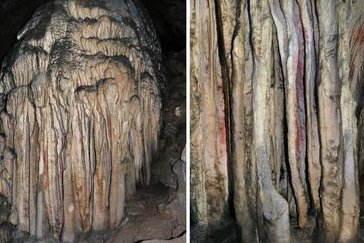 , Study: Neanderthals painted Spanish cave art in prehistoric times, Forex-News, Forex-News