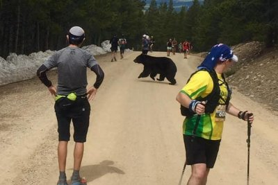 Bear darts through group of runners during Colorado marathon