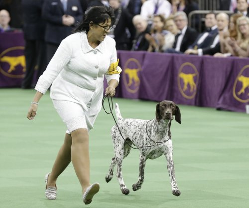Beverly Hills Dog Show to air on USA Network for the first time Easter Sunday