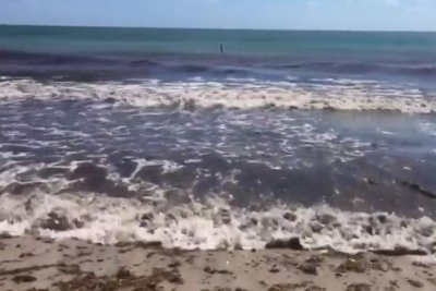 Beaches reopen along Southeast Florida coast after red tide worries