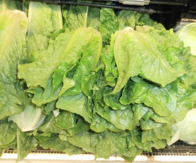 FDA recalls romaine lettuce after new outbreak sickens 40