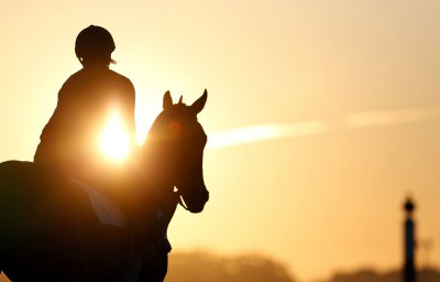 Is No. 11 a 'natural' for Belmont Stakes?