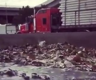 Colorado overpass semi crash rains cans of beer on the highway