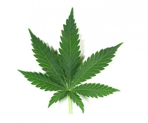 Pot may restrict blood flow to brain: Study