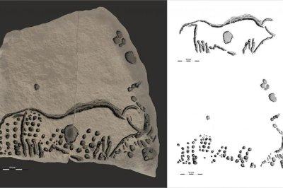 38,000-year-old pointillism rock art found in France