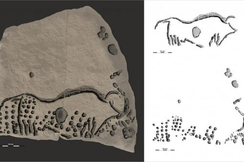 38,000-year-old pointillism rock art found in France