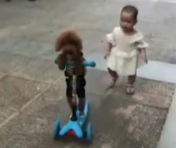 Toddler gets scooter-jacked by backpack-wearing poodle