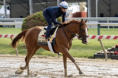 Kentucky Derby winner Justify draws gate No. 7 for Preakness