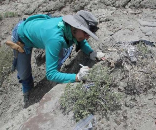 Some large plant-eating dinosaurs also snacked on crustaceans