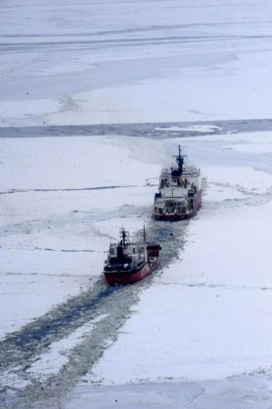 Rosneft sees huge potential in arctic resources