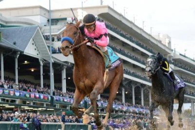 Hustle Up wins Mine That Bird Derby; status of Kentucky Derby field remains in flux