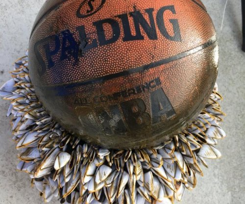 Boat skipper finds basketball with 'beard' of barnacles