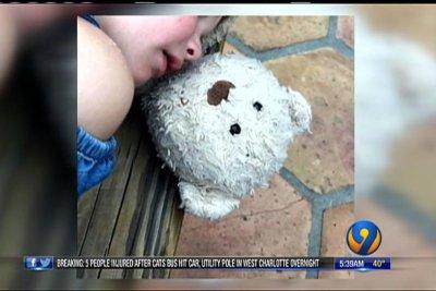 Family offers $500 for return of girl's lost teddy bear
