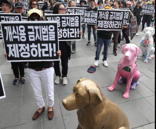 South Korean lawmakers propose bill to ban killings of dogs