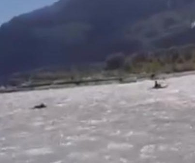 Kayaker charged by grizzly bear in British Columbia river