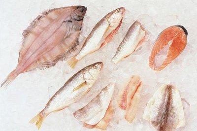 Higher fish consumption may prevent premature birth