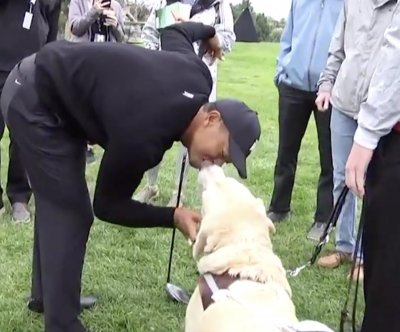 Tiger Woods kisses guide dog on the mouth at Genesis Open
