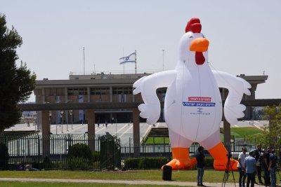 Giant chicken at Knesset slams 'cowardice' of Israel toward Hamas
