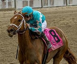 UPI Horse Racing Weekend Preview: Big weekend awaits Philly