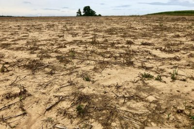 Midwest farmers under the gun to plant corn