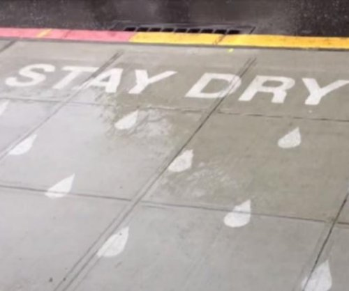 Seattle artists create rain-powered sidewalk paintings