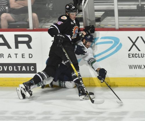ECHL's Everblades, Solar Bears have massive hockey fight