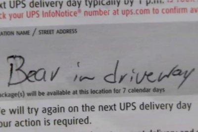 Watch: UPS driver's note laments 'bear in driveway' - UPI com