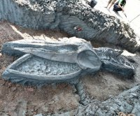 Scientists find ancient whale skeleton in Thailand