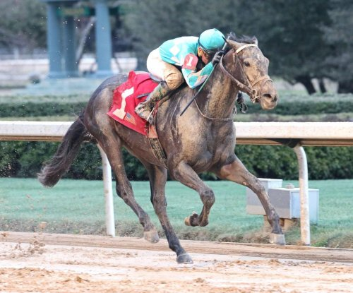 Weekend Preview: My Boy Jack enters intense Derby picture