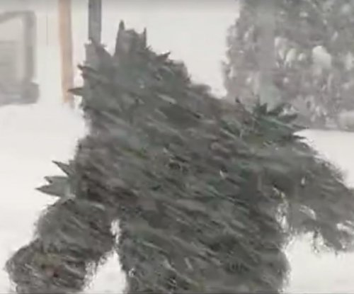 'Pot Sasquatch' interrupts Massachusetts snowstorm news coverage