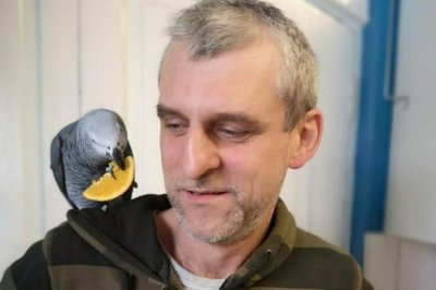 Owner reunited with parrot after proving she speaks Slovak