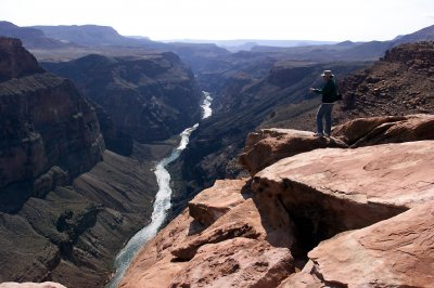 Mercury accumulating in flora, fauna of the Grand Canyon