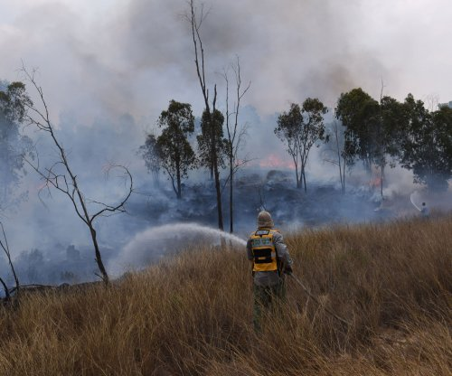 Israel: Falcon dead in arson attack, fuel cargo restricted