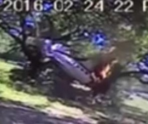 Small plane crash caught on Alabama business' security camera