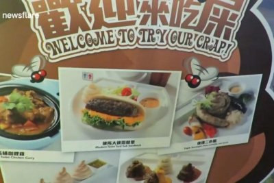 Watch Eatery Serves Food In Toilet Bowls Upi Com