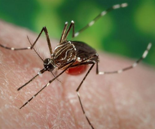 3 Drugs identified to potentially fight Zika virus