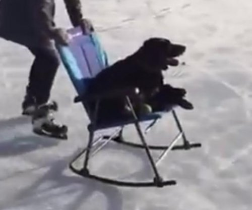 Puppy in rocking chair goes 'ice skating' on frozen lake in Canada