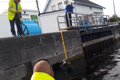 Watch:-'Soggy-cat'-rescued-from-river-lock-chamber