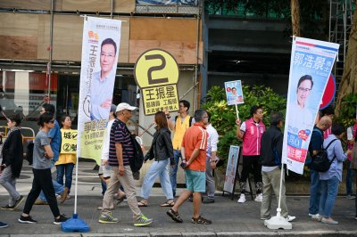 Pro-democracy candidates win landslide in Hong Kong elections