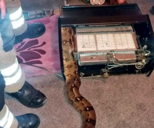 Firefighters free 8-foot snake trapped in owner's gas heater