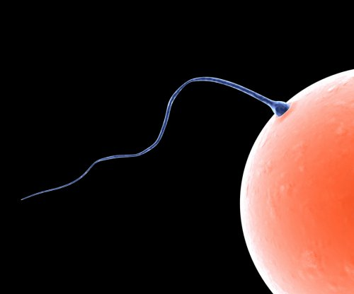 Smog exposure could make sperm weak, scientists say