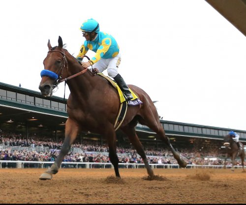 American Pharoah arrives at stud farm