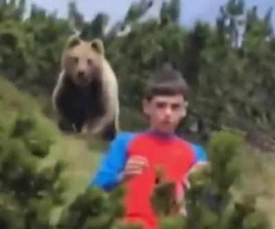Bear follows 12-year-old boy on hiking path