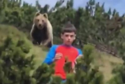 Bear follows 12-year-old boy on hiking path