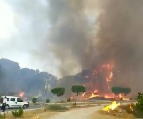 At least three dead as more than 50 forest fires erupt in Turkey